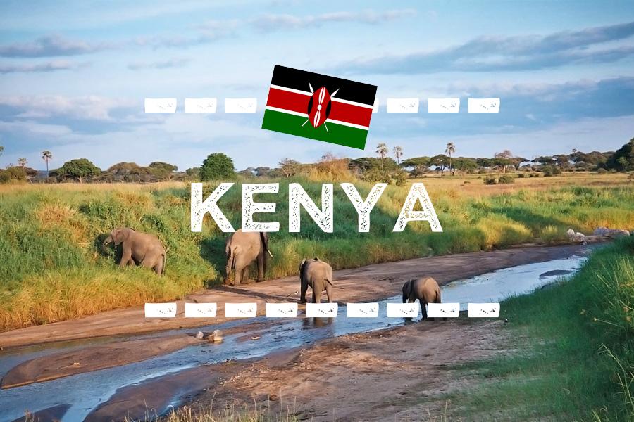 ケニアの旅行情報